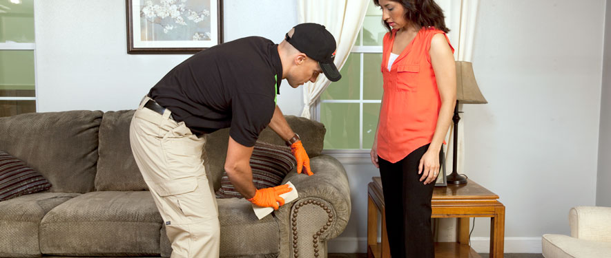 Ponte Vedra, FL carpet upholstery cleaning